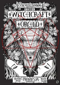 2804-Witchcraft-Orchid